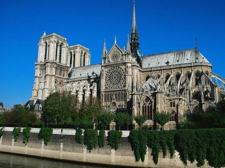 Собор Парижской Богоматери на острове Сите фото Парижа