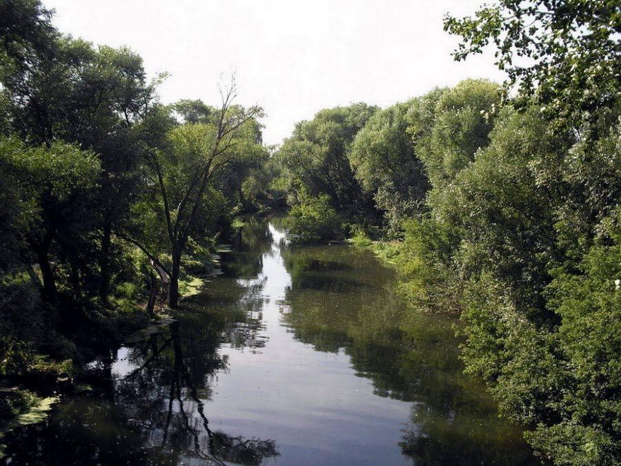 Фото вид на реку Медведица в питомнике Актарска