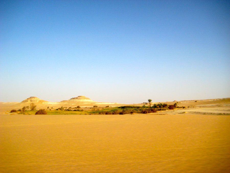 Оазис Сива в Египте фото