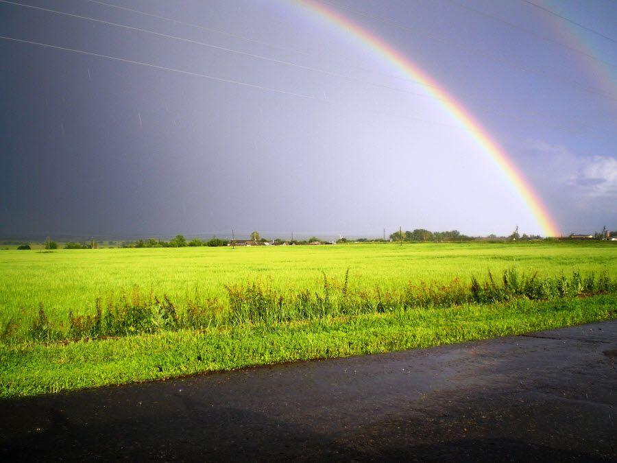 Фото радуга в полях Окского заповедника