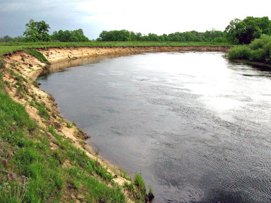 Окский заповедник река Пра фото