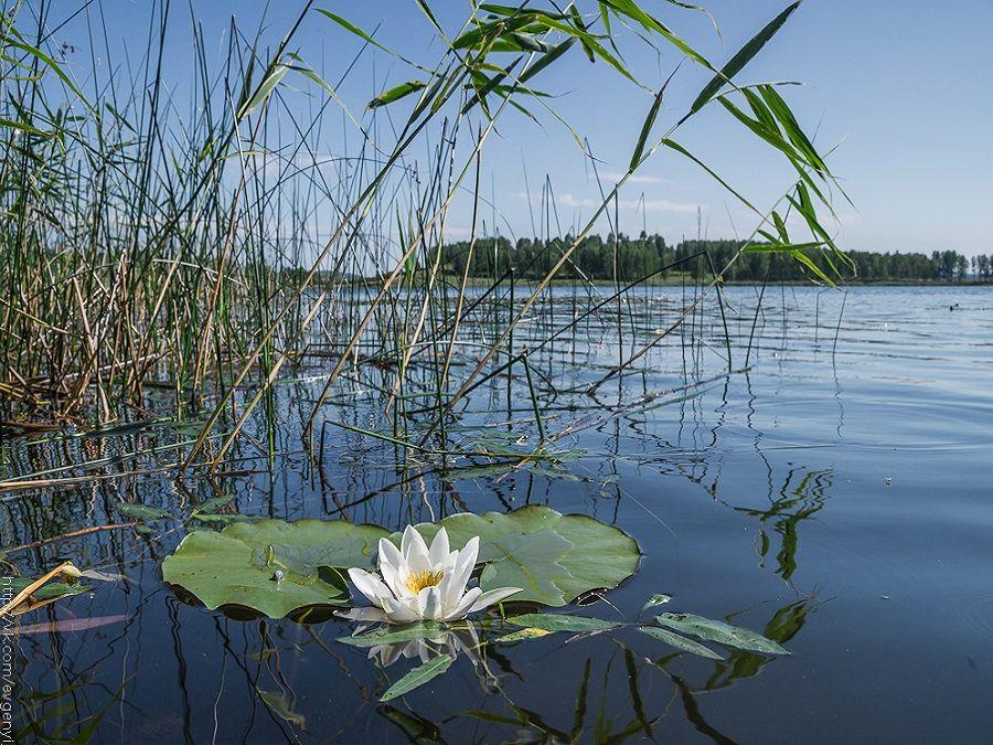 Озеро Карагайкуль фото Башкортостана
