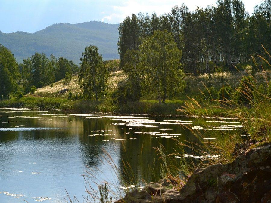 Фотография берегов озера Карагайкуль