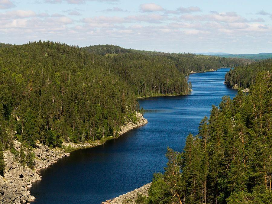 Фотография озера Пизанец в Карелии