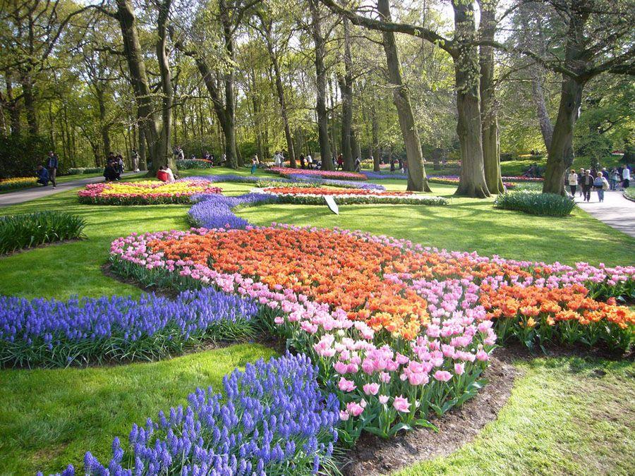 Парк Кёкенхоф в городке Лиссе фотография
