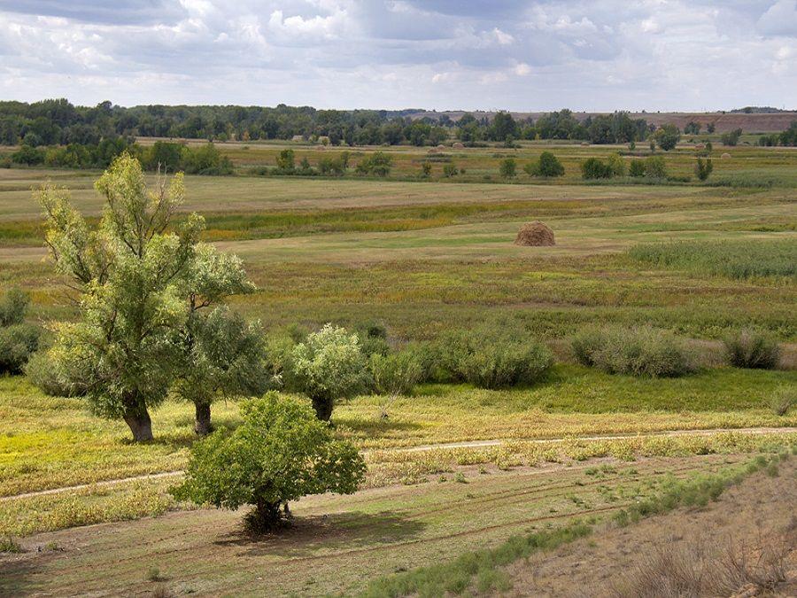 Природный парк Калмыкии фото