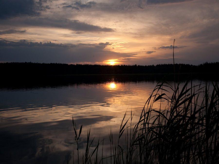 Фото озеро Беленькое в Рязанской области вид вечером