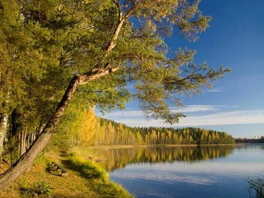 Вид осенью на Смоленское Поозерье фото