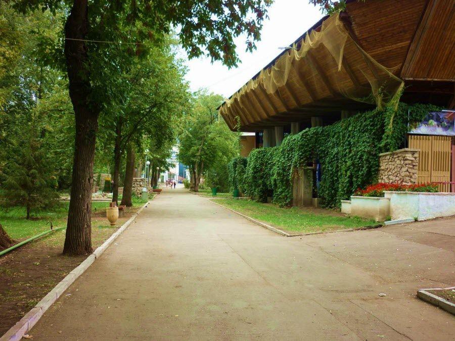 Фото центральной аллеи Струковского парка Самары