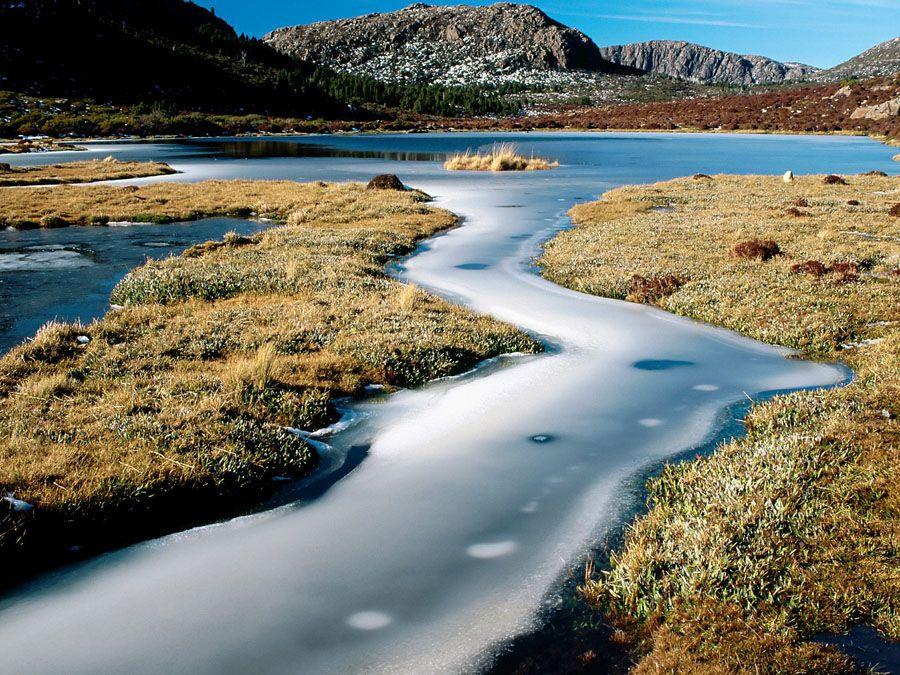 Заповедный остров Тасмания фотография