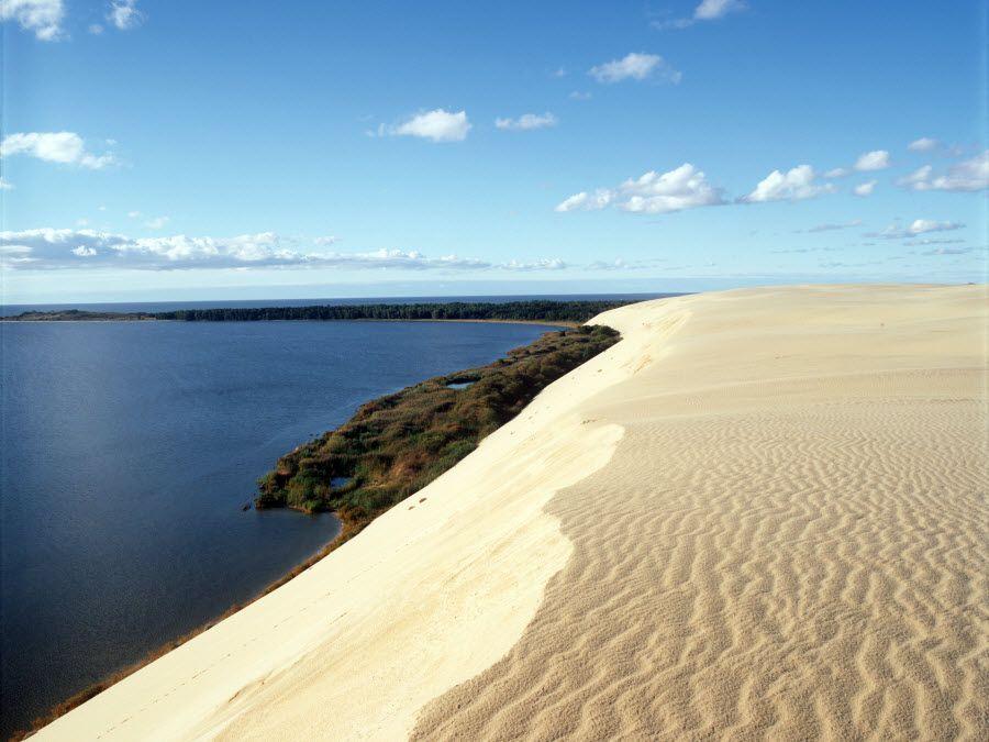 Фото пляжа Куршской косы