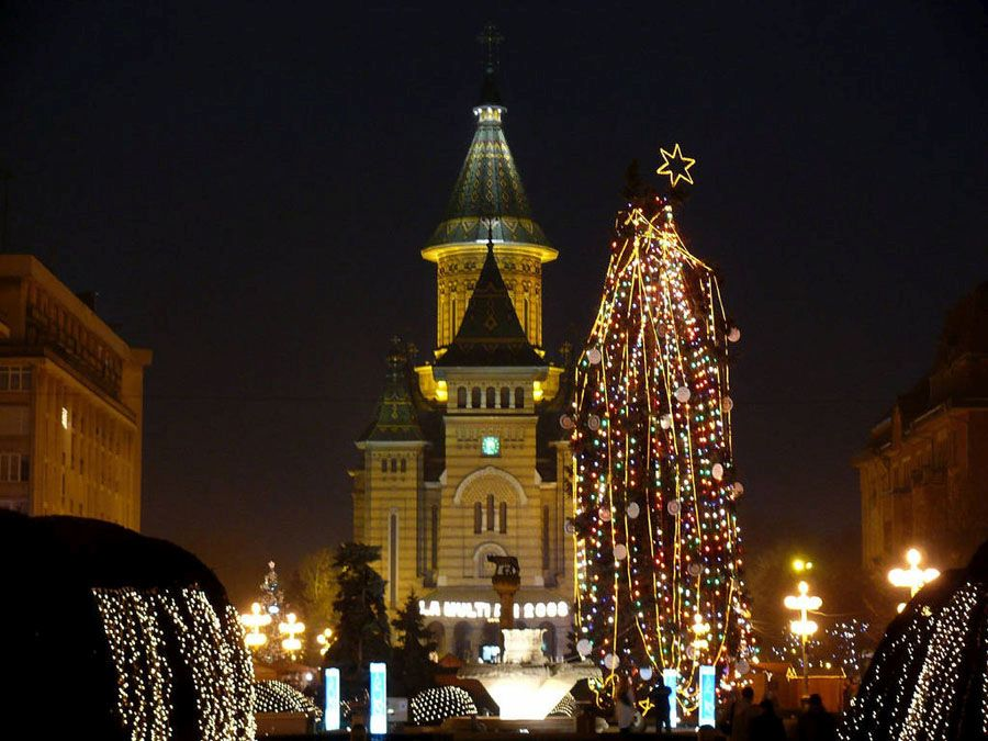 Новогодняя ёлка Тимишоара Фото