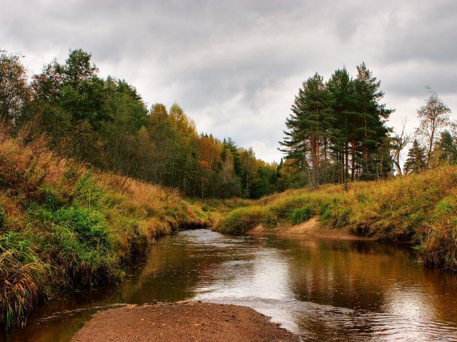 Фото природы Тульской области осенью