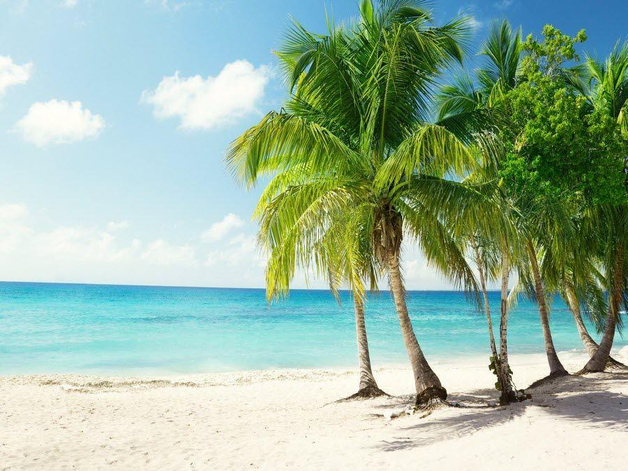 Тунис – страна-рай фото