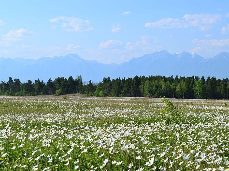 Тукинский национальный парк фото долины