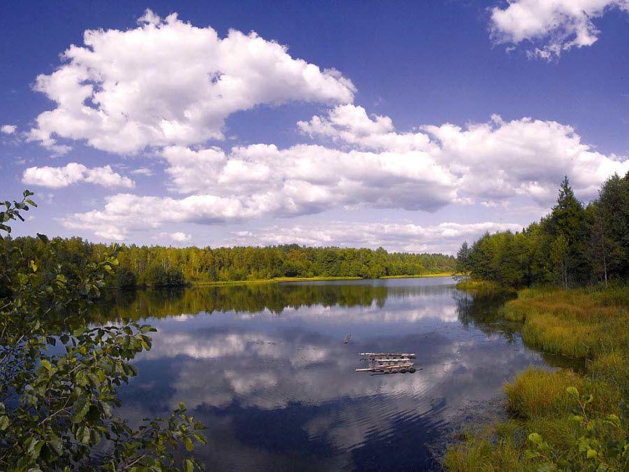 Фото необыкновенной природы Владимирской области