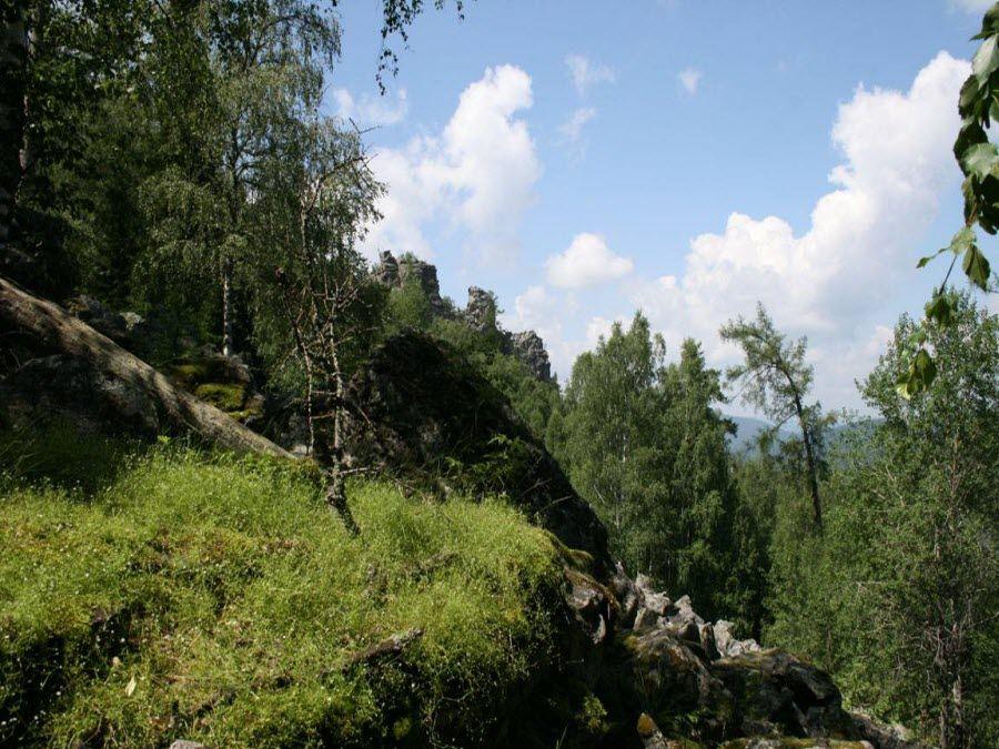 Природа Воронинского заповедника фото