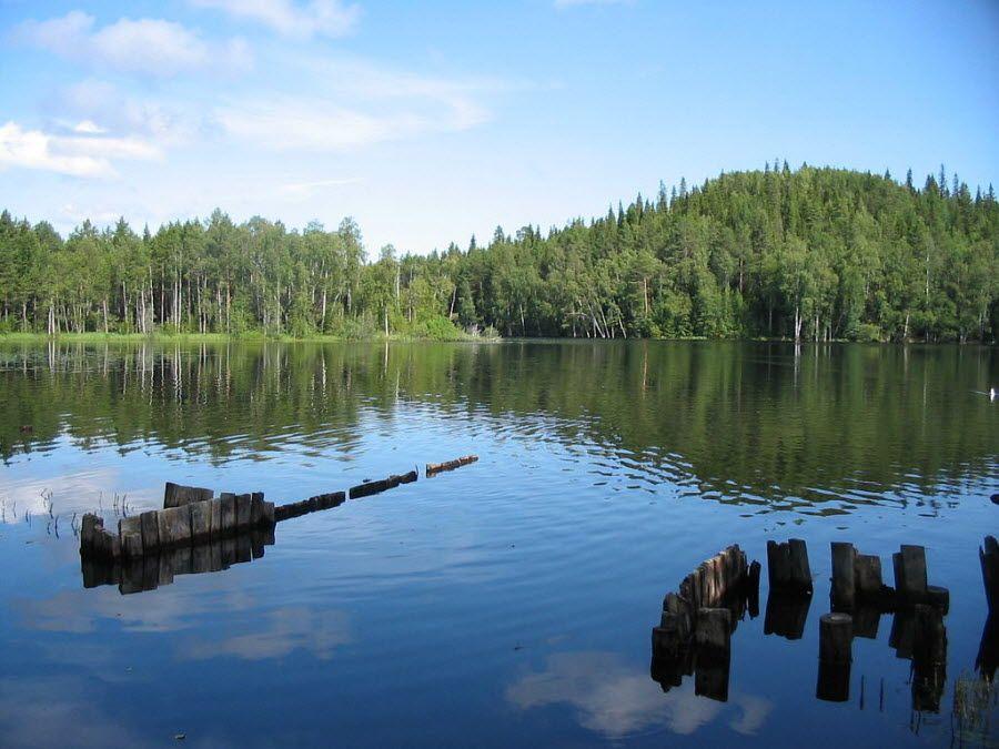 Фото красивой природы большого Соловецкого острова