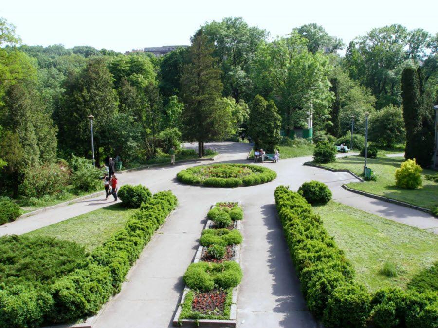 Фото Ботанический сад города Ростова