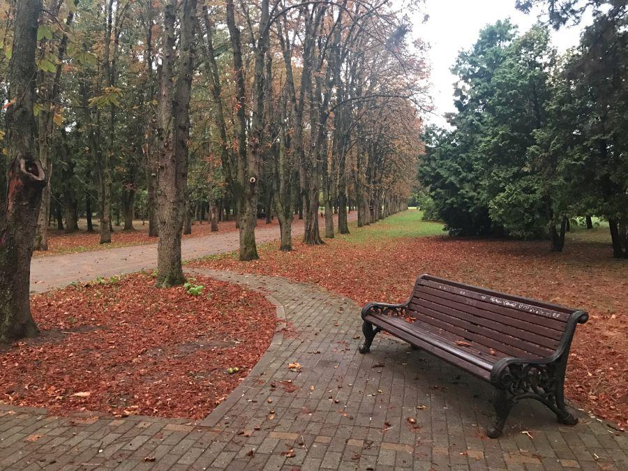 Фотография Ботанический сад имени И. С. Косенко