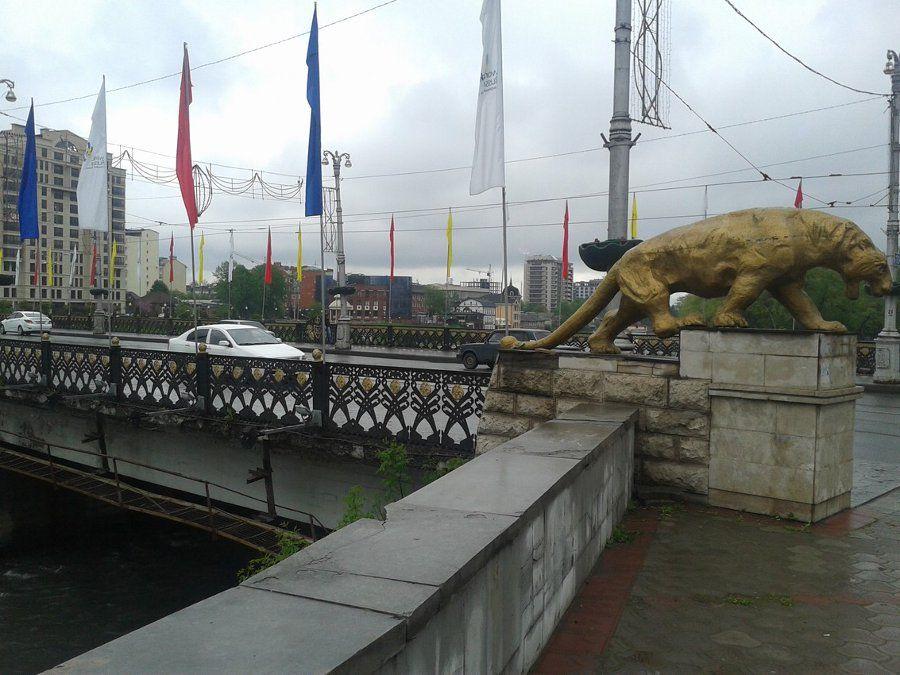 Чугунный Ольгинский мост фото