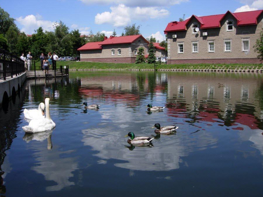 Лебединое озеро в городе Уфа фото