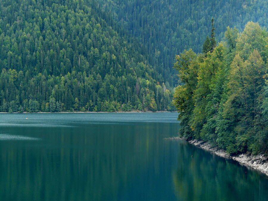 Озеро Рица в Грузии фото