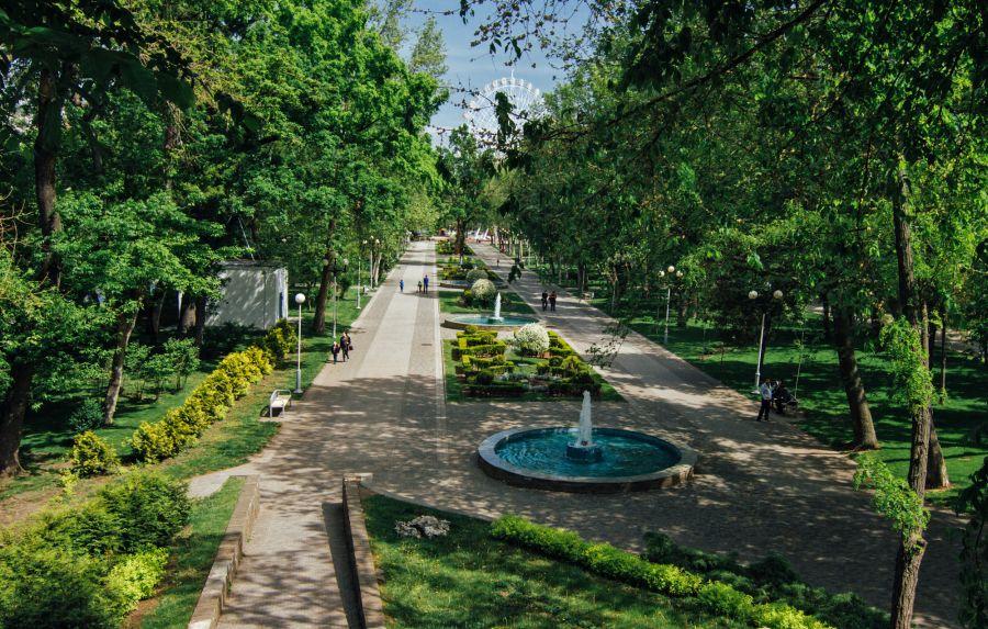 Фотография городского сада в Краснодаре
