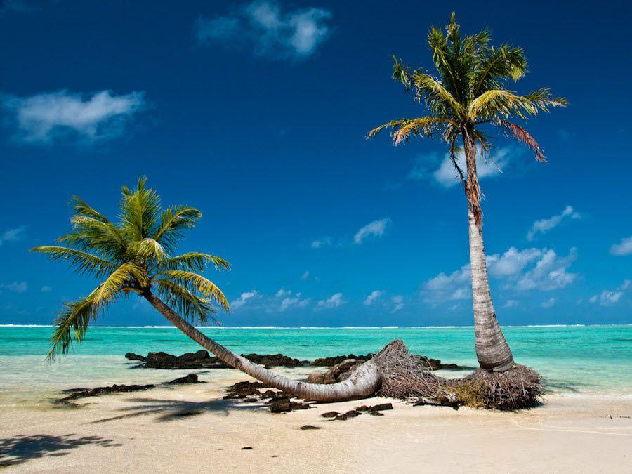 Фото белых песчаных пляжей Мадагаскара