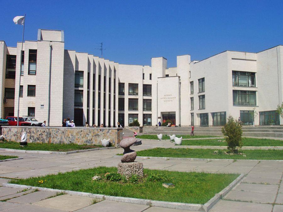 Киевская детская академия искусств фото