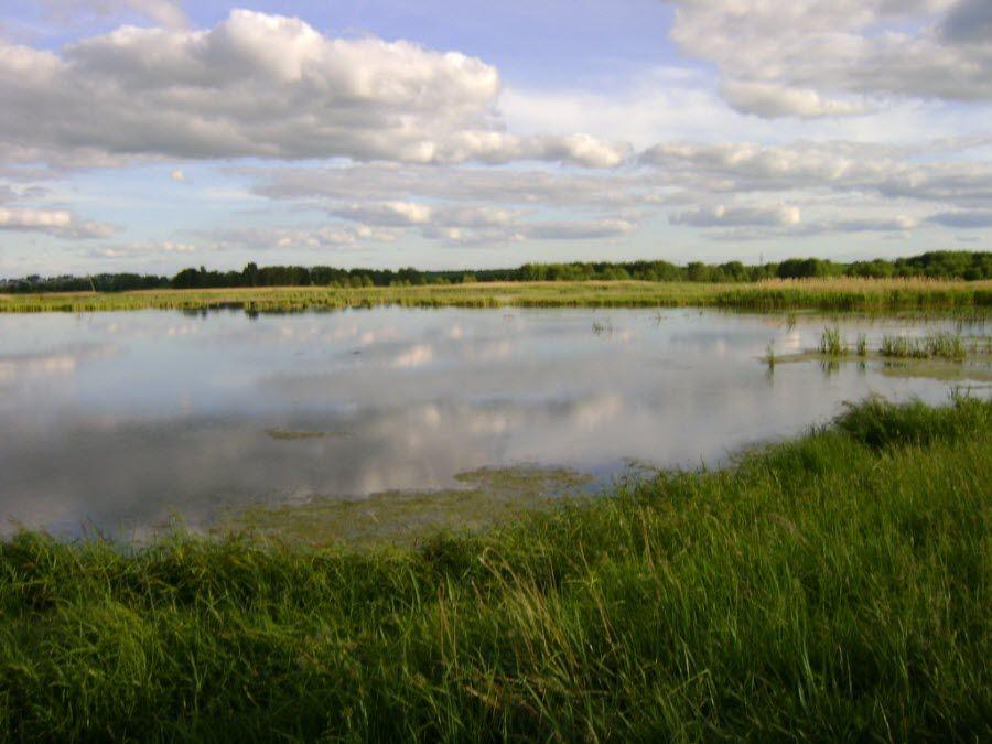 Озеро Вадское в Нижегородской области фото