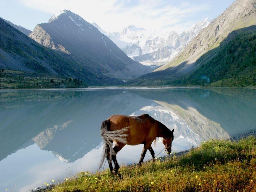 Фото завораживающего озера Алтай
