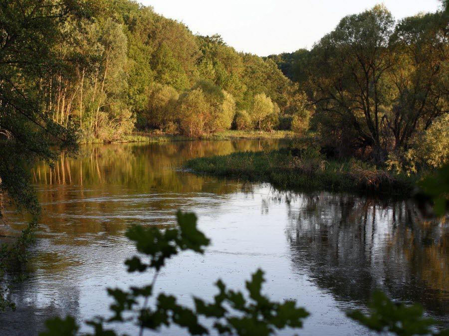 Фото удивительной природы Липецкой области