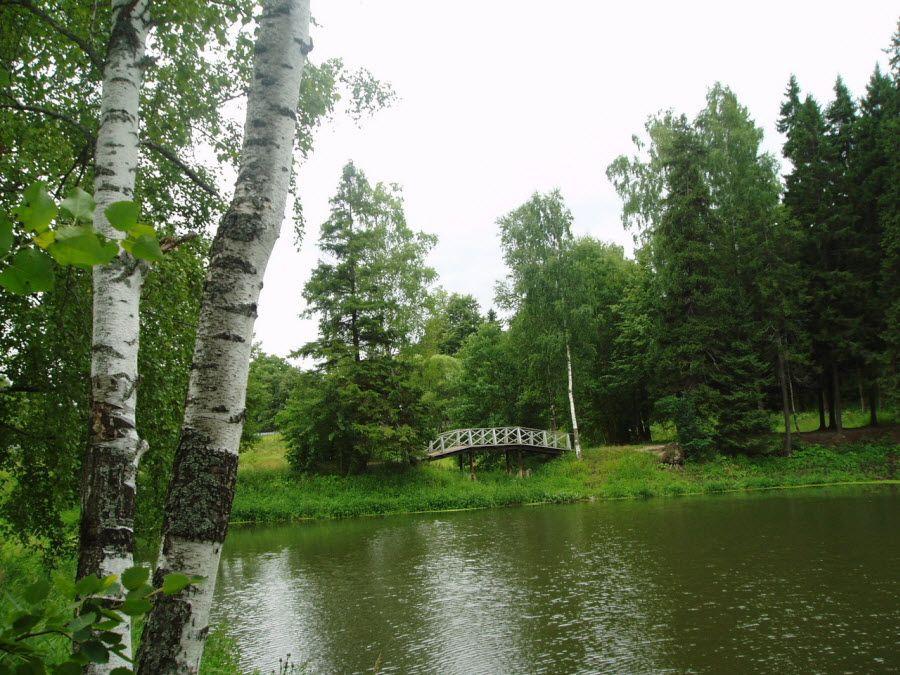 Фото природа окружающая усадьбу Абрамцево