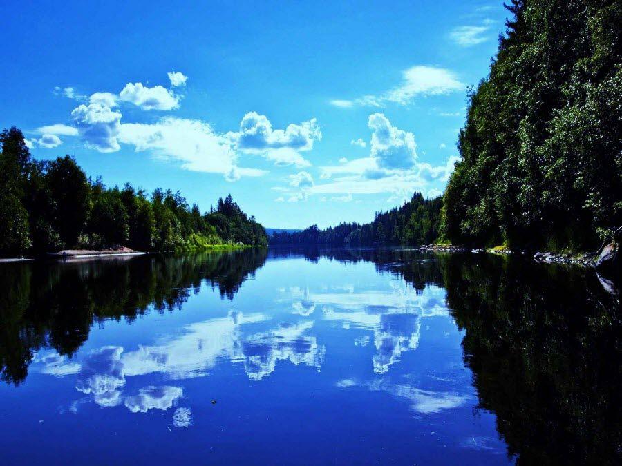 Озеро Чаны в Новосибирской области фото