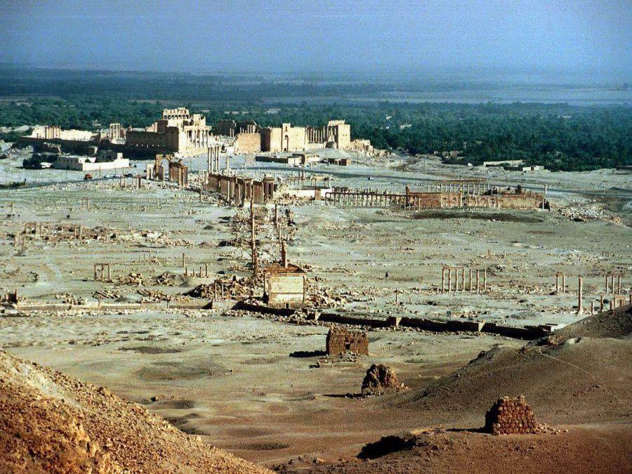Панорама Пальмиры в Сирии фото