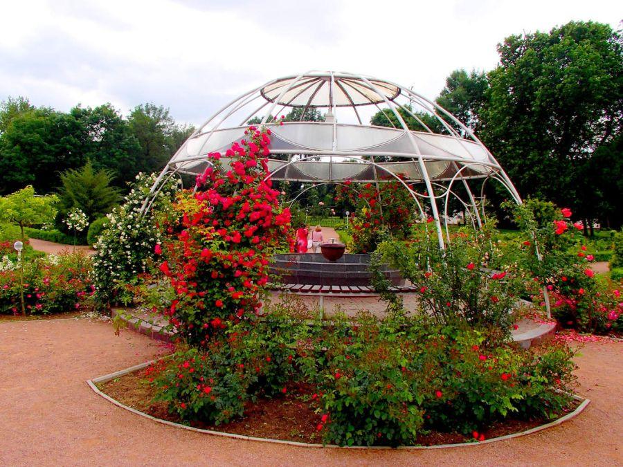 Парк «Салгирка» фото