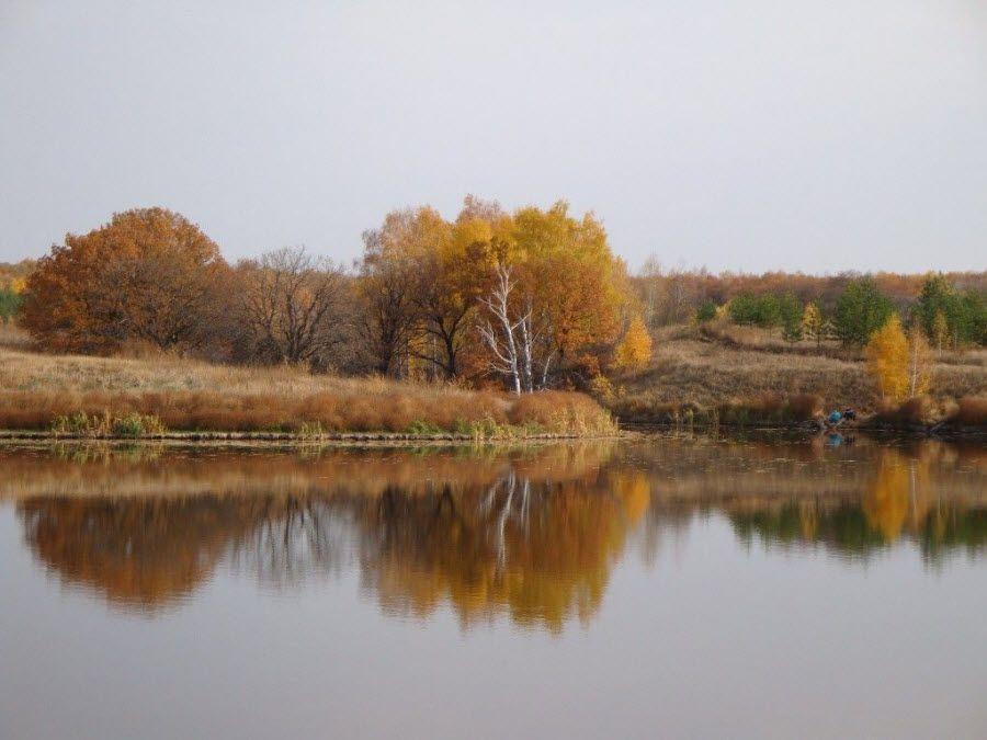 Вид осенью на природу Саратовской области фото
