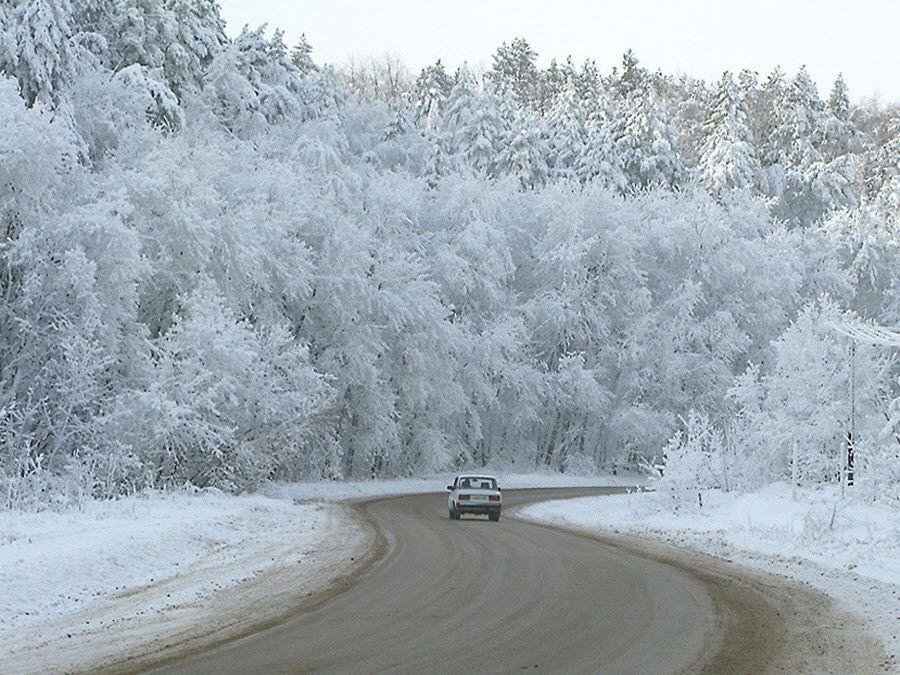 Вид зимой на природу Саратовской области фото