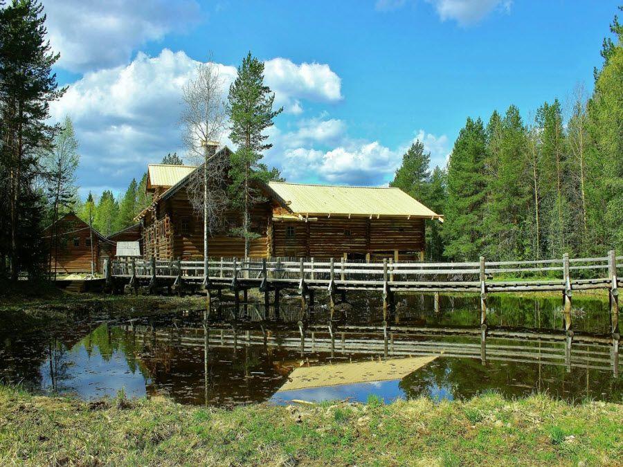 Фото красивой природы музея Малые Корелы