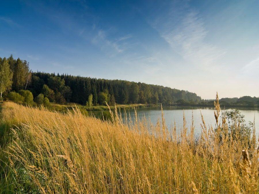 Фото удивительного пейзажа Смоленской области