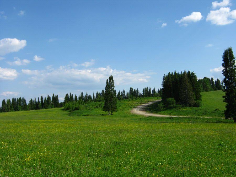 Удивительная природа Свердловской области фото
