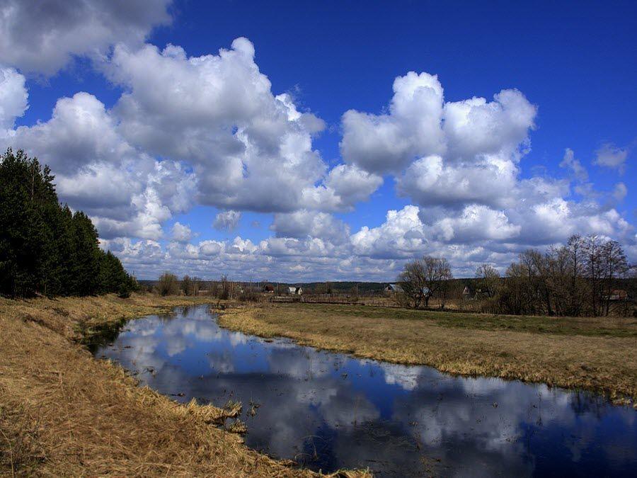Фото удивительной природы Тамбовской области