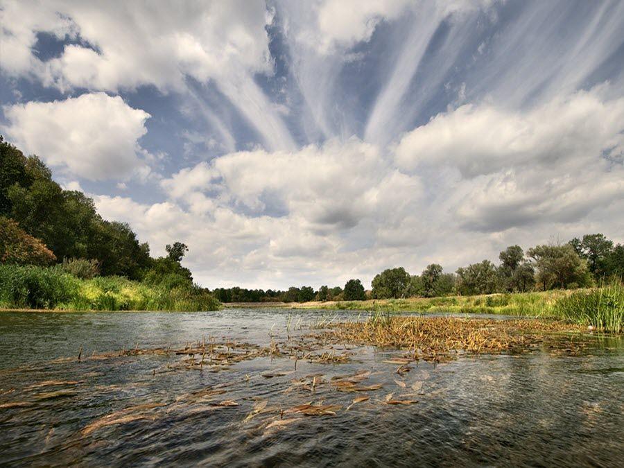 Красивая природа Долины Хопра в Саратовской области фото