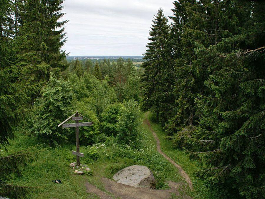 Фото природа Вологодской области