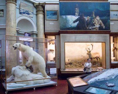 петербург музей Антарктики и Арктики зимой