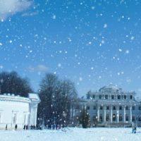 петербург парк на Елагинском острове зимой