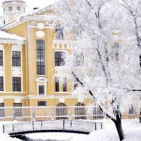 петербург Юсуповский сад зимой