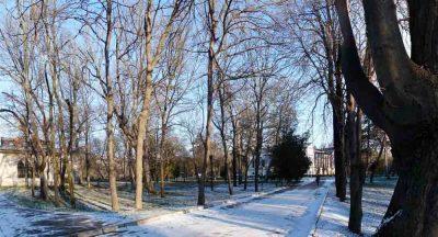 Воронцовский парк (Салгирка) зимой